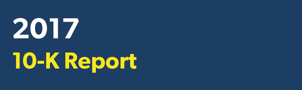 2017 10-K Report