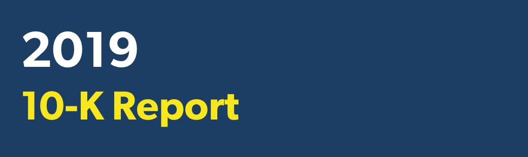 2019 10-K Report